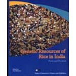 Genetic Resources of Rice in India: Past and Present